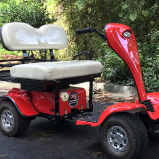 ESV-cricket-mini-golf-cart-scooter